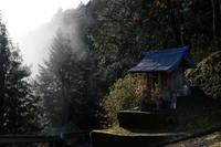 霧中に咲く - katsuのヘタッピ風景