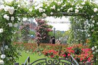バラと艦船 『ヴェルニー公園2020』 - 写愛館