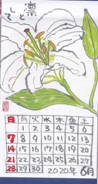古川2020年6月ゆり - ムッチャンの絵手紙日記