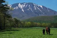 みちのく岩手山景 - みちのくの大自然
