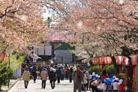 津山 - 新・旅百景道百景