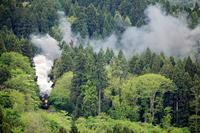 汽車煙の残る風景 - 蒸気屋が贈る日々の写真-exciteVer