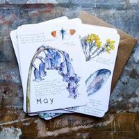 鉛筆で描くこと:インスピレーションを受けたものパート2 - ブルーベルの森-ブログ-英国のハンドメイド陶器と雑貨の通販