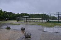 雨降りの公園、独り占め? - 岳の父ちゃんの PhotoBlog
