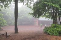 霧の赤城自然園・・・シルエットロマン(1) - 『私のデジタル写真眼』
