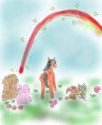 虹の橋大作戦8 - La Vie en rose  バラ色の人生