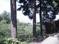 5月24日散歩 - さ・ん・ぽ道