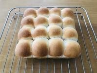 ちぎりパンが上手に焼けました - 蒼穹、 そぞろ歩き2