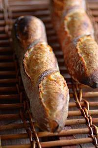 バゲットとヤマガラ - 森の中でパンを楽しむ