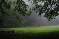 森の静謐・・・霧の赤城自然園・・・シルエットロマン(2) - 『私のデジタル写真眼』