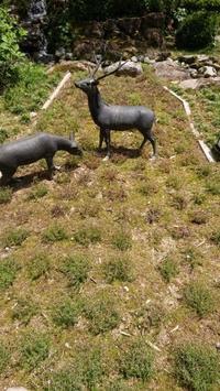 われは草むしりロボット - 金沢犀川温泉 川端の湯宿「滝亭」BLOG