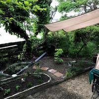 ステイホームを利用して!庭のお手入れ。「気持ち良い!外席になりそうです」編 - ドライフラワーギャラリー⁂ふくことカフェ
