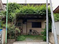 5月の庭 2020 - 1 - ちーの助が行く