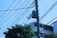 足立区の街散歩 467 - 一場の写真 / 足立区リフォーム館・頑張る会社ブログ