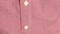 ギンガムチェックのシャツ - 西蔵坊だより