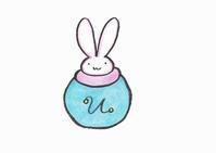 壺ウサギ - Wildsnow33's Blog