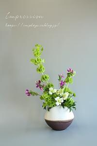 定期装花からモルセラ - Impression Days
