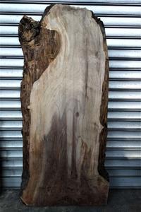 ウォルナット変形一枚板❷walnut - SOLiD「無垢材セレクトカタログ」/ 材木店・製材所 新発田屋(シバタヤ)