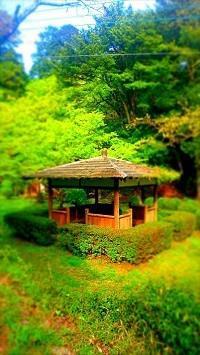 ねんきんQuiz-第608問(ねんきん定期便) - 松浦貴広のねんきんブログ