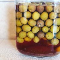 自家製オリーブの漬物 - 幸せなシチリアの食卓、時々にゃんこ