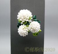カルチャー休講の再延長 - 郁駒屋