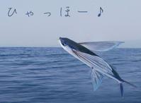 バレたか★ぴちぴち>゜))彡 - 月夜飛行船2