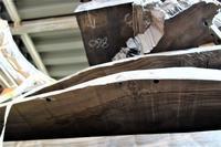 クマンバチ●● carpenter bee - SOLiD「無垢材セレクトカタログ」/ 材木店・製材所 新発田屋(シバタヤ)