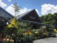 成田の素敵なカフェ。 - 素敵生活 Low costでも豊かに