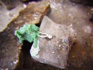 珊瑚のネックレスお修理[2] -