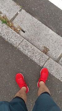 ランニング再開 - N・Photograph & My Super CUB110 【新・写真とスクーター】