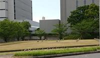 昨日のお写ん歩 - □ □ nuku-nuku □ □