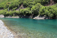 新緑の銚子川 - みちはた写真館フォトギャラリー