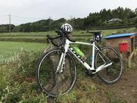 ロードバイクで印旛沼へ - pottering