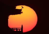 """""""鞆の浦ロマン紀行""""~10年を振り返って~その参拾弐 - 鞆の浦ロマン紀行"""