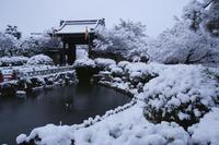 妙満寺 - Deep Season