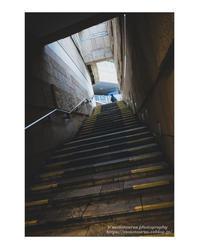 Step2 - ♉ mototaurus photography