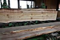 樅(もみ)の木製材 - SOLiD「無垢材セレクトカタログ」/ 材木店・製材所 新発田屋(シバタヤ)