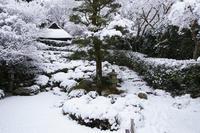 金福寺 - Deep Season