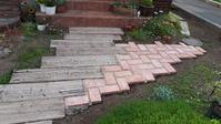 玄関脇の小道とクレマチス - わらびの庭づくり。時々猫