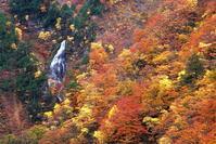 村上市三面渓谷の紅葉 - 日本あちこち撮り歩記