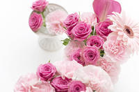 Pink flowers☆ - Be strong and happy!