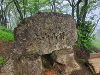 200531大山 - 100日記