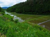 棚田 - 飛騨山脈の自然
