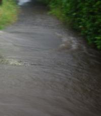 ゲリラ豪雨と空堀川 - ひのきよ