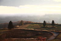 小千谷市山本山の雲海頂上展望台編 - 日本あちこち撮り歩記