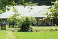 むしむししますね~… - 千葉県いすみ環境と文化のさとセンター