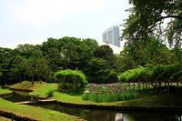 小石川後楽園 - お散歩写真     O-edo line