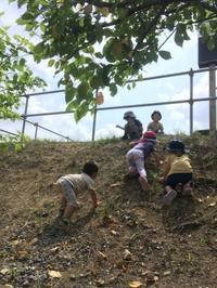 まったり里山公園 - 茅ヶ崎藤沢の青空自主保育てぃだのふぁブログ