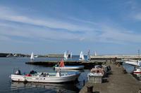 漁港(その2) - そぞろ歩きの記憶