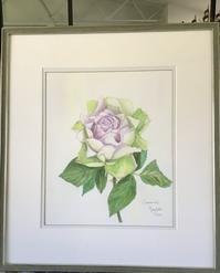 透明水彩でバラを描くRose for Youラピスベール - バラのある幸せな暮らし研究所